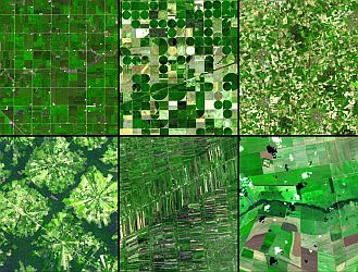 Agriculture - Aerial Photo
