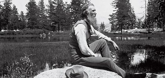 John Muir. Photo: Corbis.
